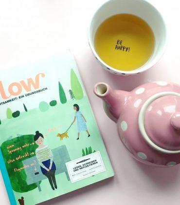 Flow Achtsamkeit Übungsbuch 2016