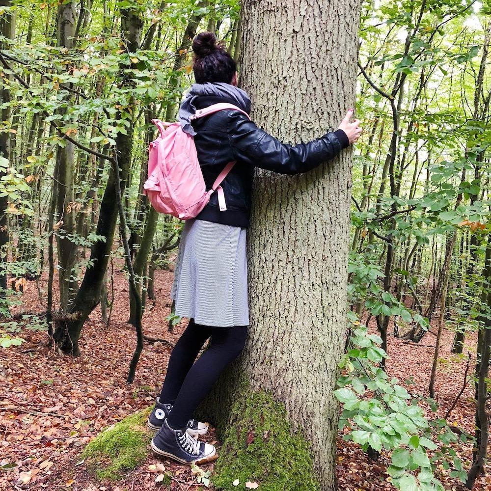 Was ist Shinrin Yoku Waldbaden