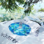 Seed of Life Cosmic Grid Wasser