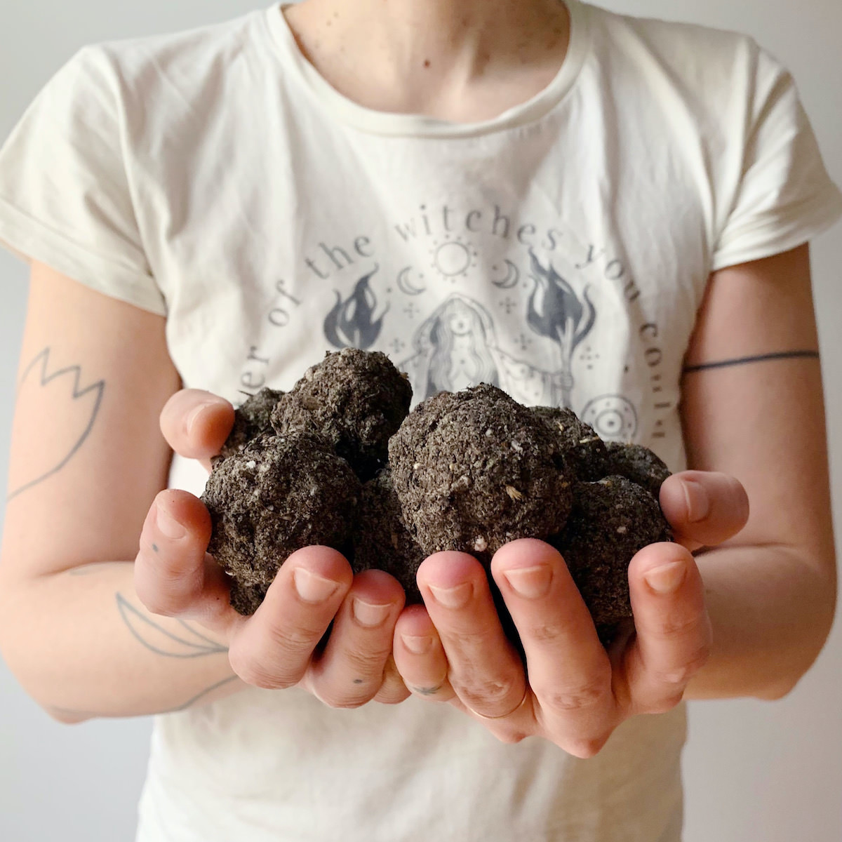 Seed Bombs Anleitung